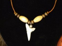 large single sharks tooth necklace brown